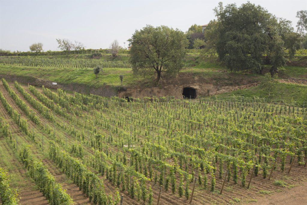 Casale Vallechiesa
